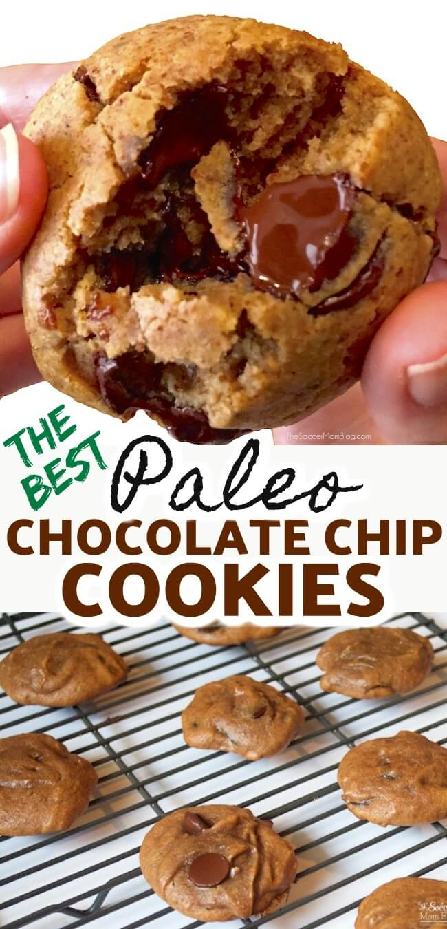 I can never eat just one!! Chewy paleo chocolate chip cookies are so decadent you'd never guess they're actually good for you!