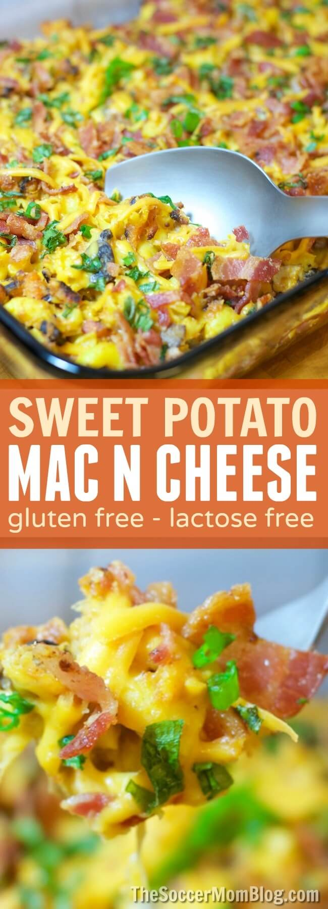 INSANELY delicious Sweet Potato Mac N Cheese is gluten free and lactose free!