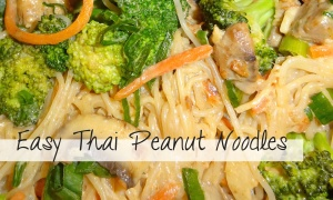 Easy Thai Peanut Noodles Recipe