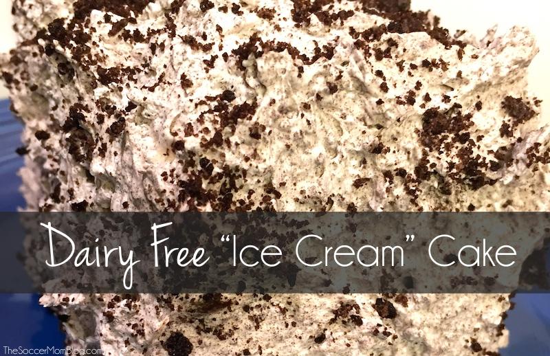 Lactose Intolerant Ice Cream Cake