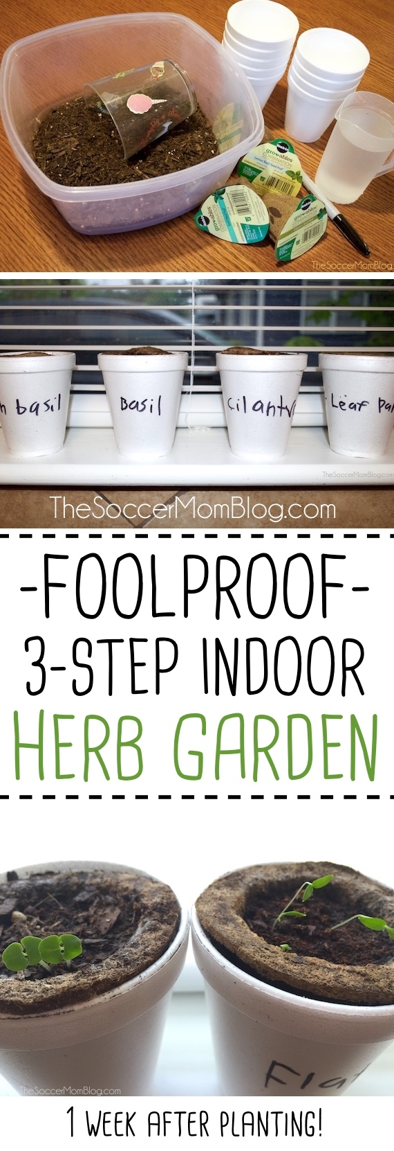 A foolproof tutorial for an indoor herb garden...perfect if you don't have a green thumb or for gardening with kids! Simple and mess-free!