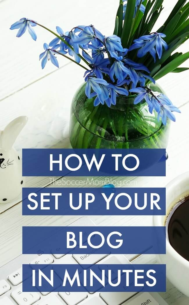 "Step-by-step guide to set up WordPress blog FAST! Topics include: web hosting, customizing your site, writing your first post & bonus ""secrets"""