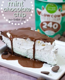 """Lightened Up"" Frozen Mint Chocolate Chip Pie"