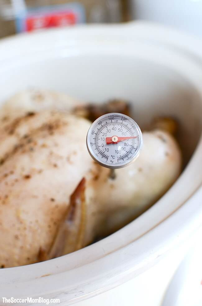 Never suffer through dry chicken again! This foolproof slow cooker chicken recipe gives you perfectly moist and tender meat every time!
