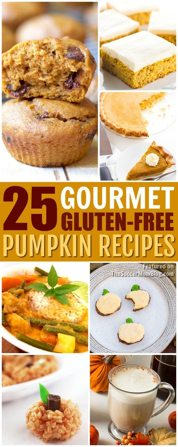 "From appetizers to savory mains to crave-worthy desserts, these gluten free pumpkin recipes are so darn delicious that no one will ever know the ""secret!"""