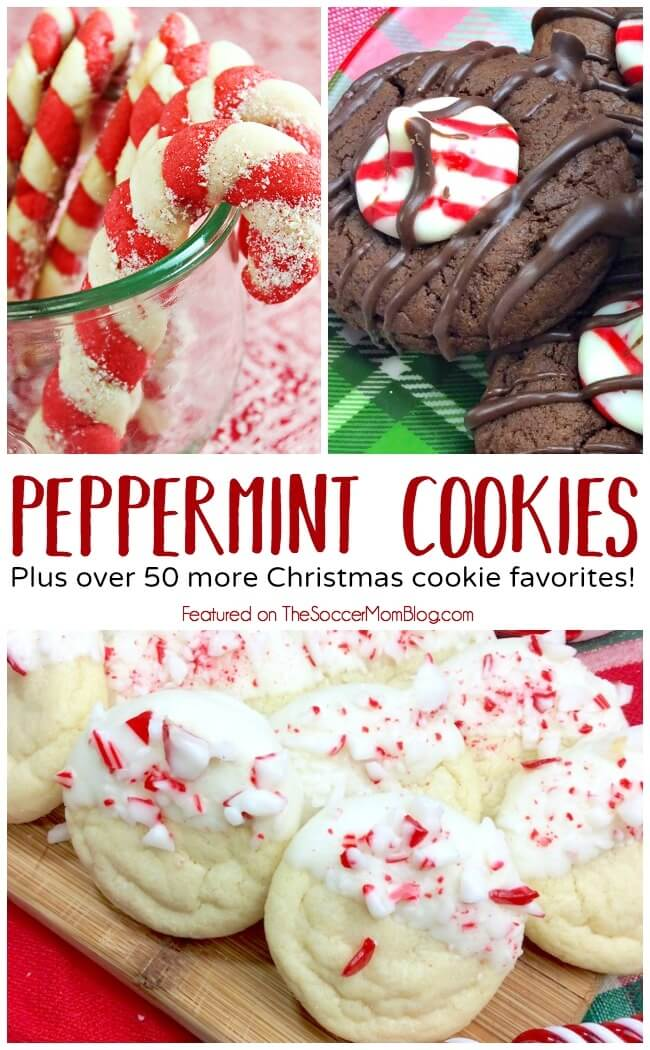 75 Best Christmas Cookies From Food Bloggers The Soccer Mom Blog