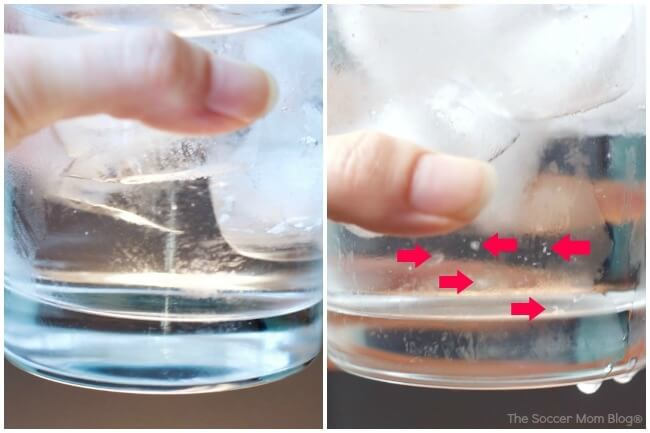 Water comparison between Culligan filtered water and plain tap water