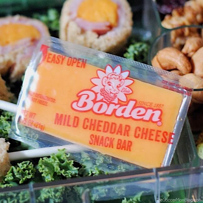 Borden Cheese Snack Bars