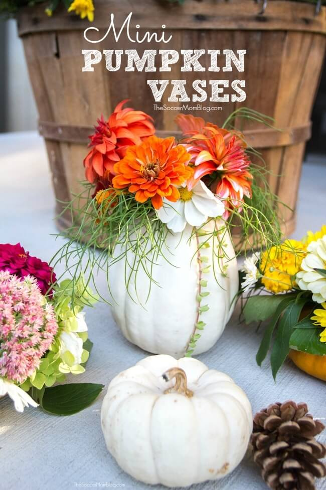These gorgeous mini pumpkin vases are the perfect way to display fresh flowers for fall or a unique Thanksgiving centerpiece.