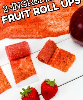 Homemade Fruit Roll Ups – Only 2 Ingredients!