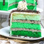 This gorgeous green Mint Chocolate Cake is a show-stopping layer cake perfect for St. Patrick's Day or Oreo fans! One of our favorite holiday recipes ever!