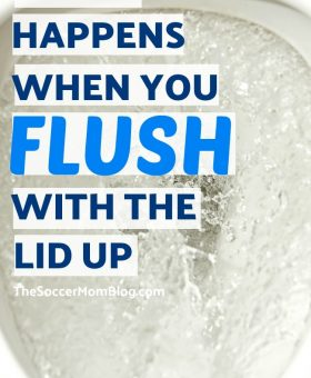 Toilet Plume: What Happens if You DON'T Close the Lid while Flushing