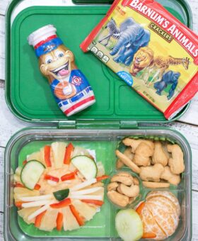 Easy Zoo Themed Lunch for Kids