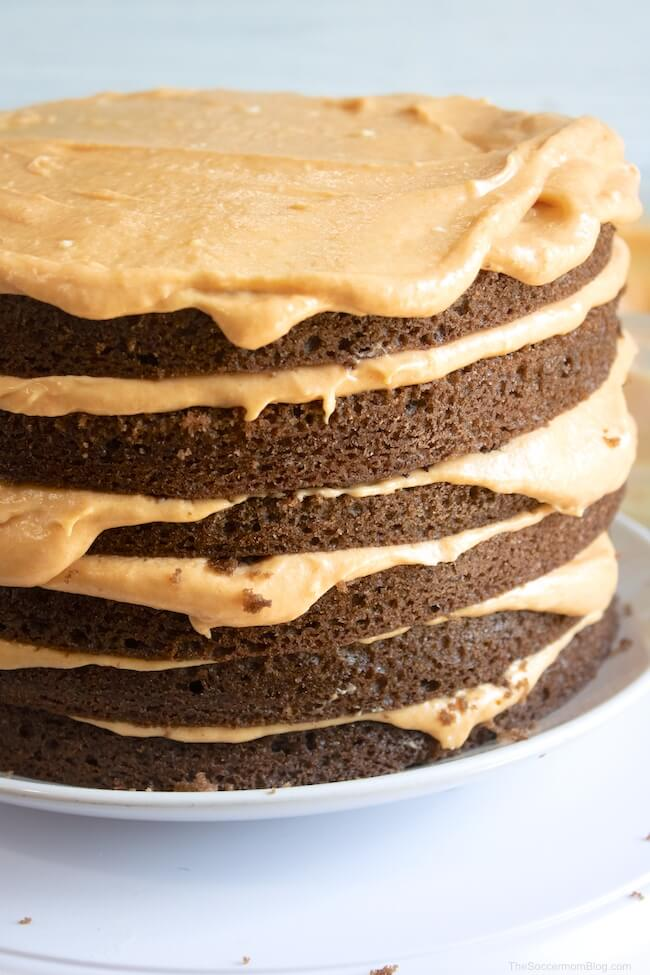 Feed your sweet tooth with this Layered Chocolate Pumpkin Cake! Chocolate and pumpkin team up to make a delicious treat!