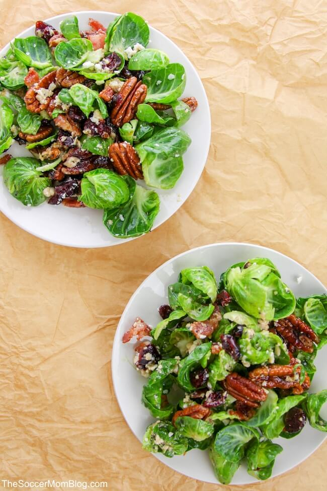 This Bacon and Brussels Sprout Salad with Poppyseed Vinaigrette is delicious and healthy! Plus, you can use the Poppyseed Vinaigrette on anything!