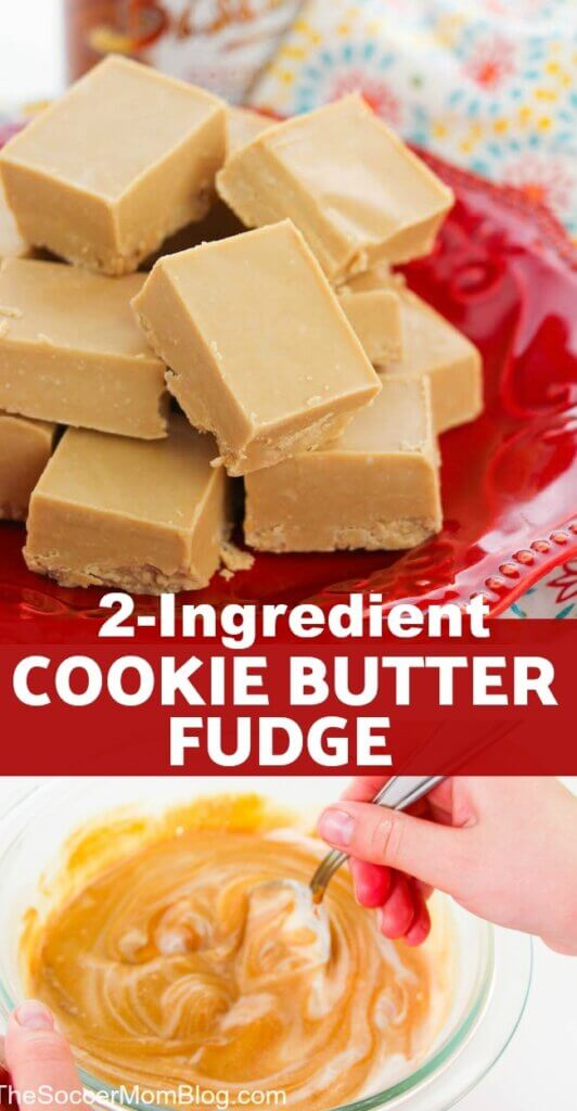 This 2 ingredient Biscoff Fudge is the most amazing decadent melt-in-your-mouth no bake fudge recipe! An easy cookie butter candy that anyone can make!