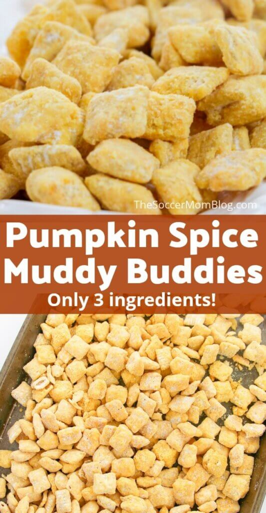 Crispy, crunchy pumpkin pie spice muddy buddies are the perfect fall party treat or lunchbox snack! Easy to make with only 3 simple ingredients!
