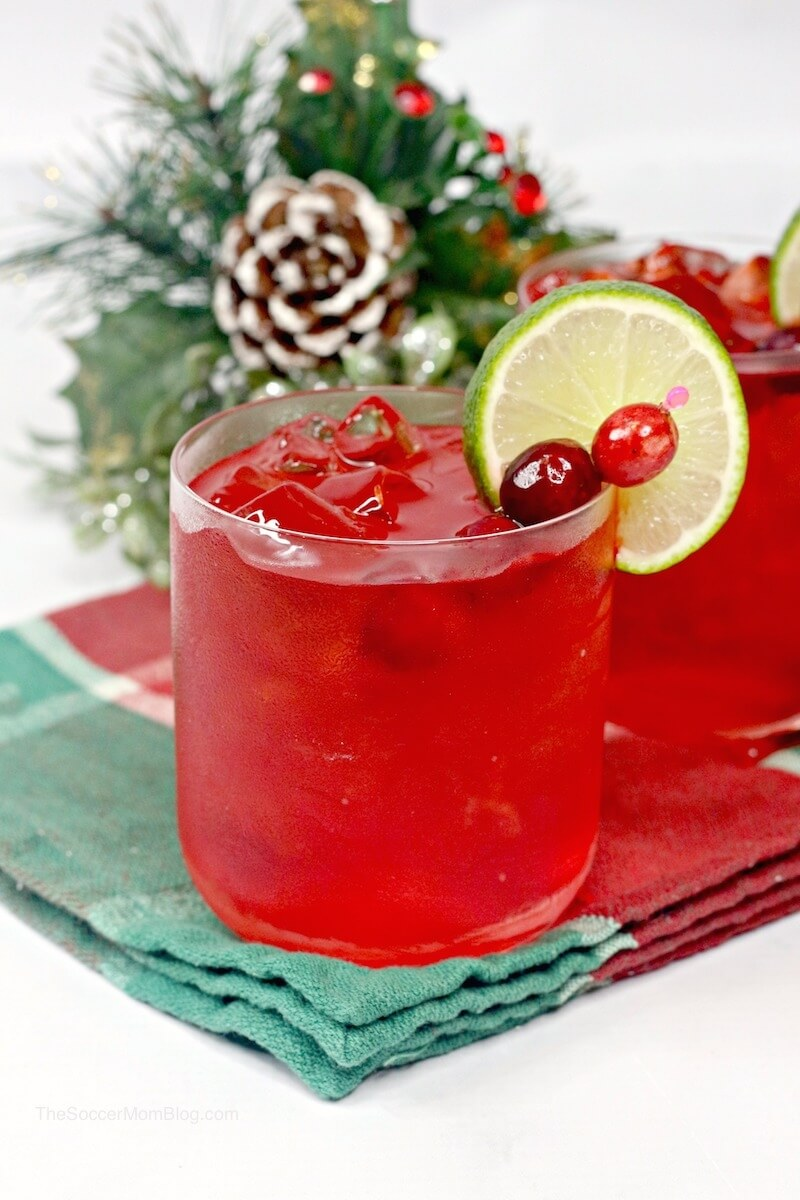Get into the holiday spirit with a fabulously festive Christmas margarita! These cranberry margaritas areabsolutely beautiful and easy to make!