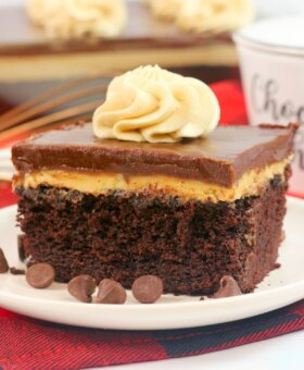 Chocolate Peanut Butter Texas Sheet Cake