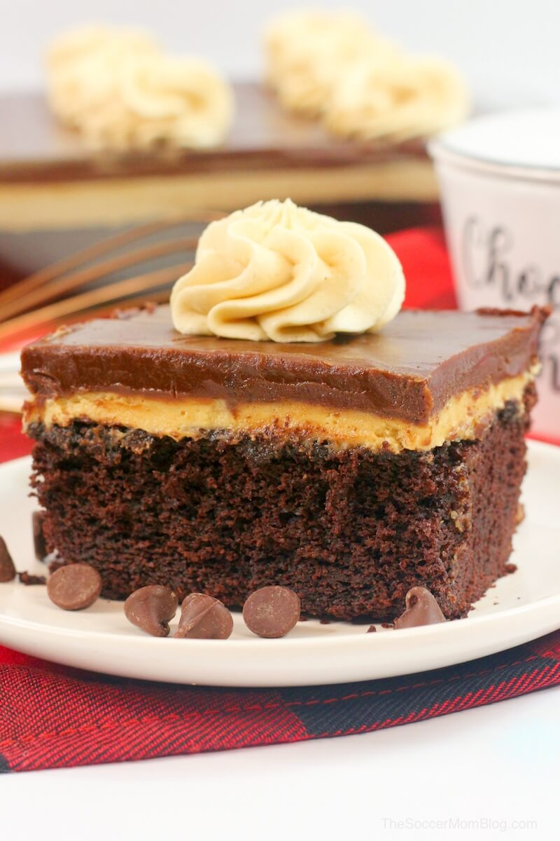 This Chocolate Peanut Butter Texas Sheet Cake is a chocolate and peanut butter lover's dream come true! Fluffy chocolate sheet cake topped with rich peanut butter cream and chocolate icing — it's perfection in every bite! If you love Texas sheet cake and you love peanut butter then this is a must try recipe!