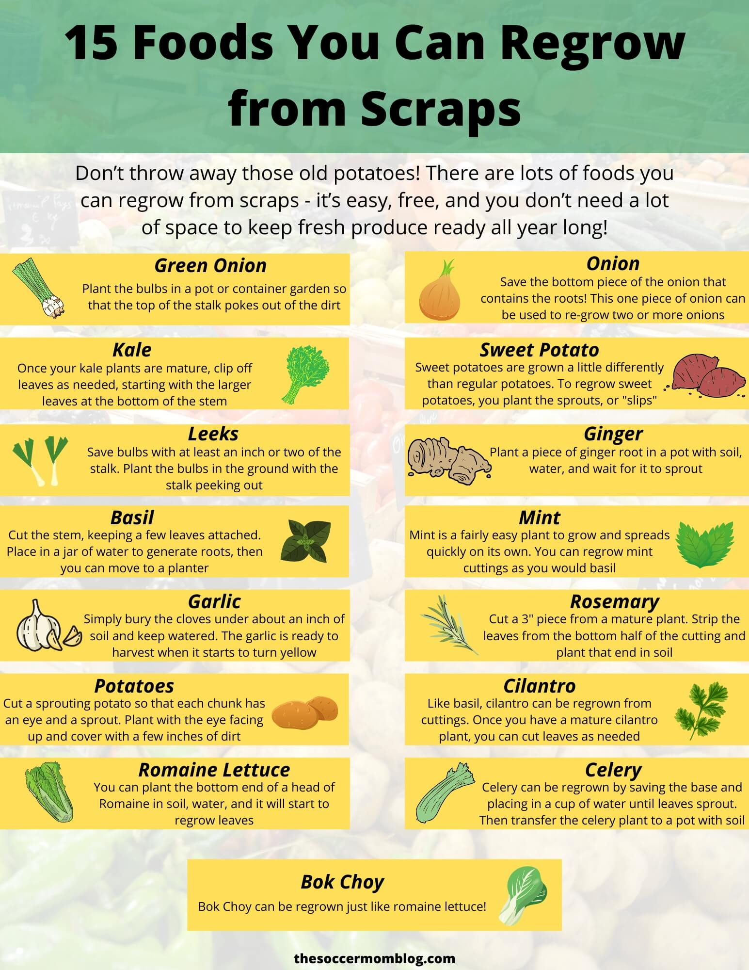 chart showing 15 food plants you can regrow from scraps
