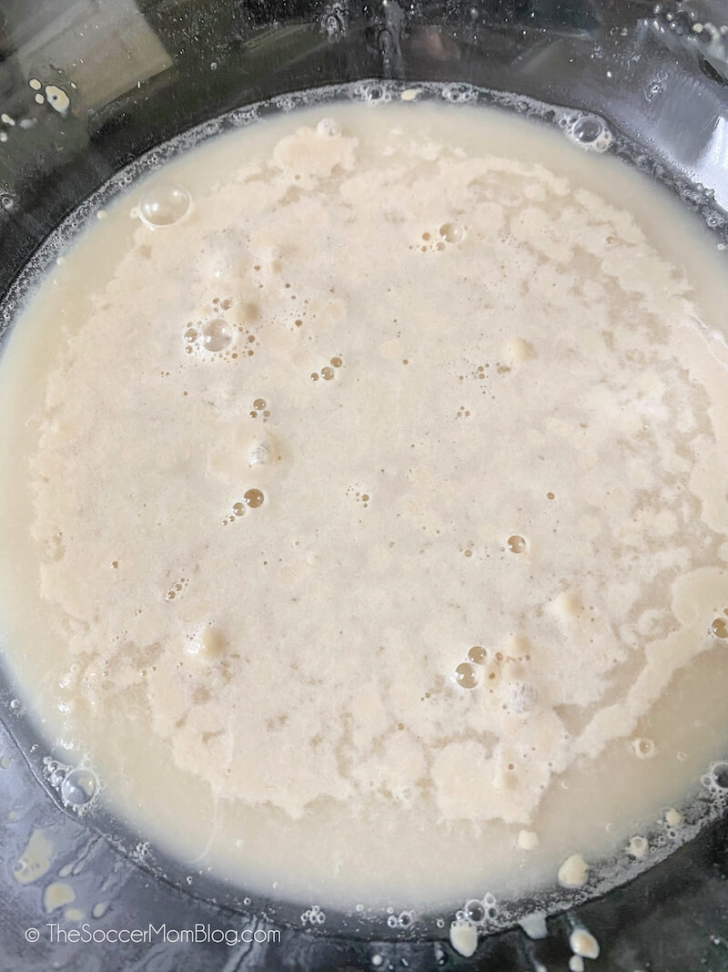 active yeast in water with bubbles