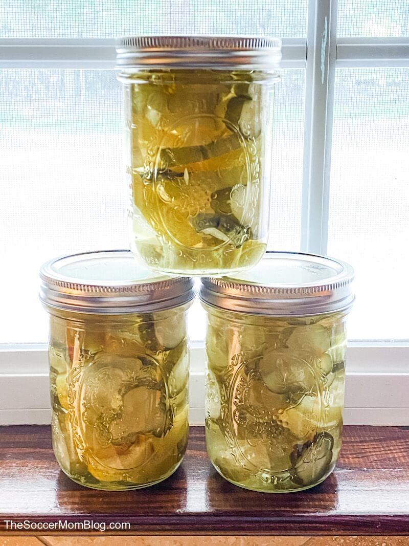 homemade pickles on windowsill