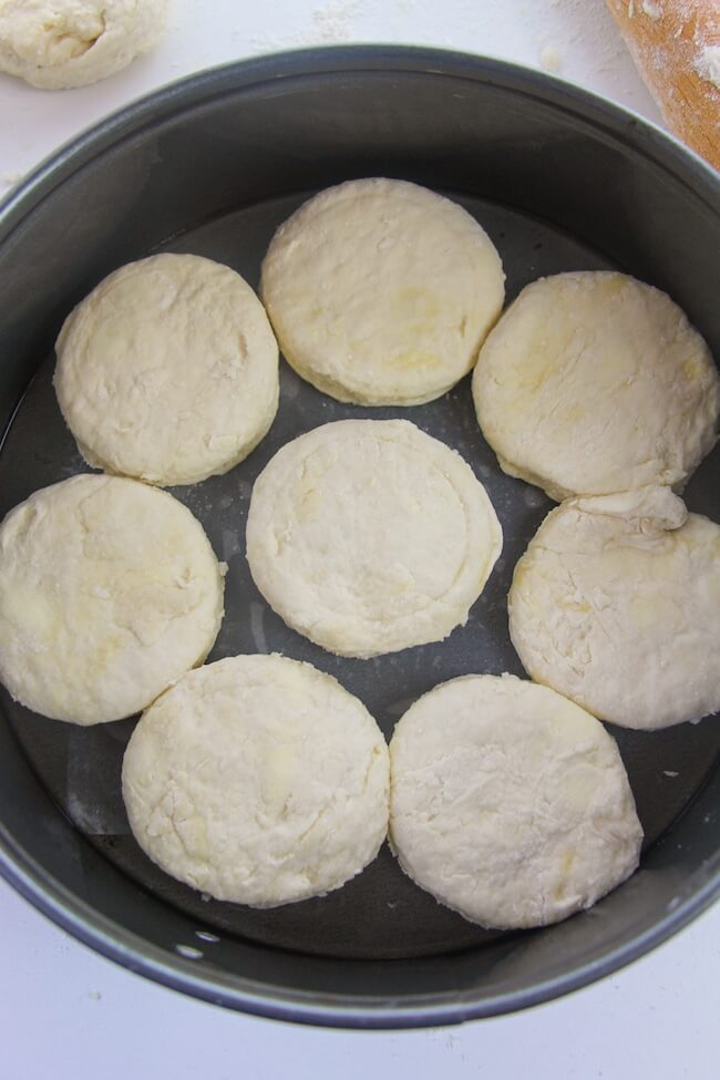biscuits in round pans ready to bake