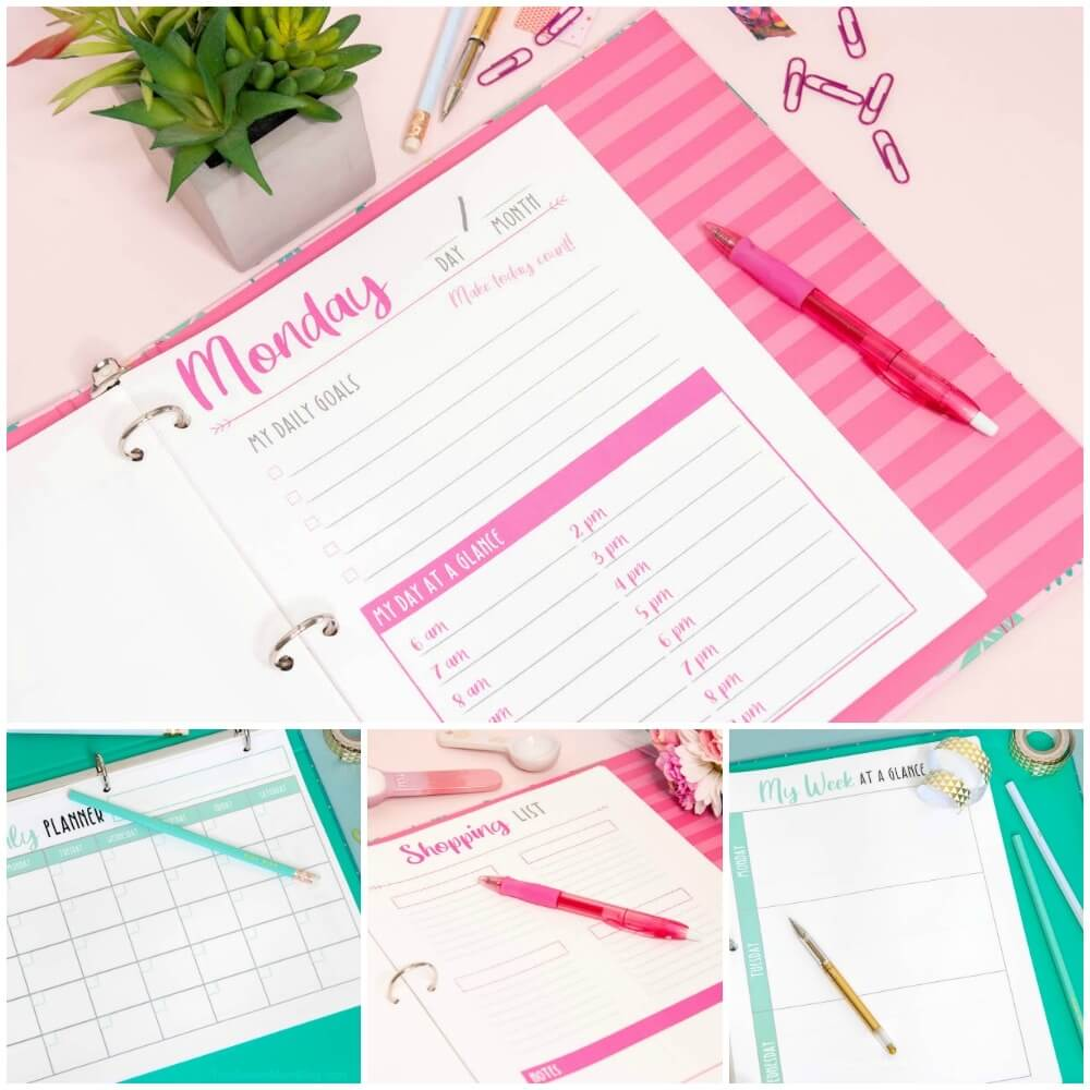 printable planner in binder - pink and teal