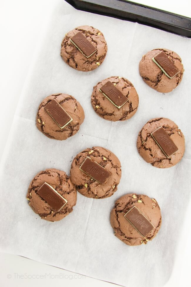 chocolate cookies with an Andes mint on top