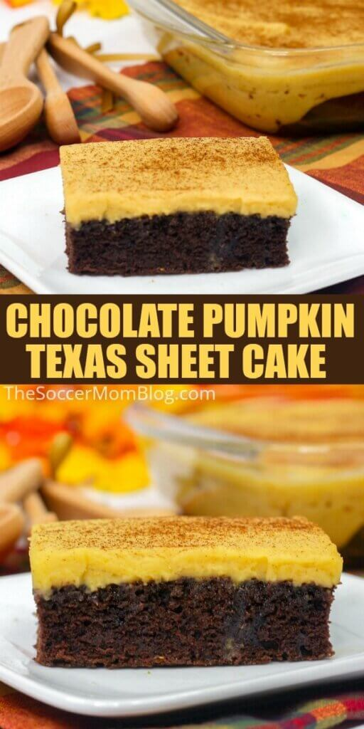 slices of chocolate cake with creamy pumpkin frosting