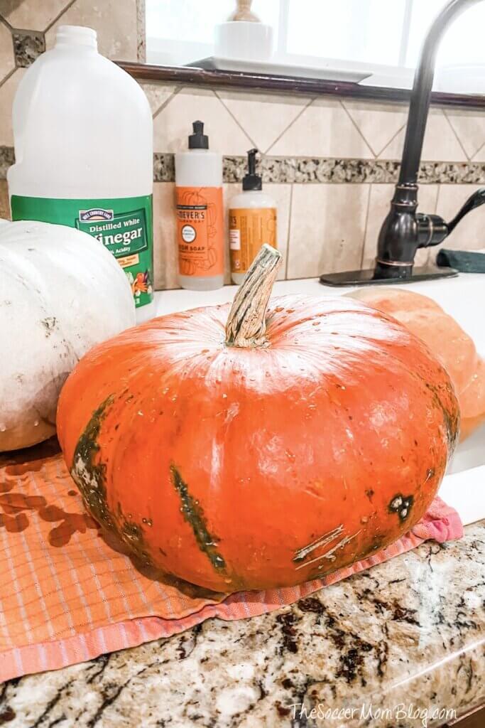 supplies needed to wash pumpkins
