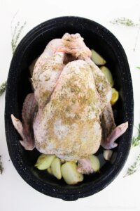 whole turkey in roasting pan before cooking