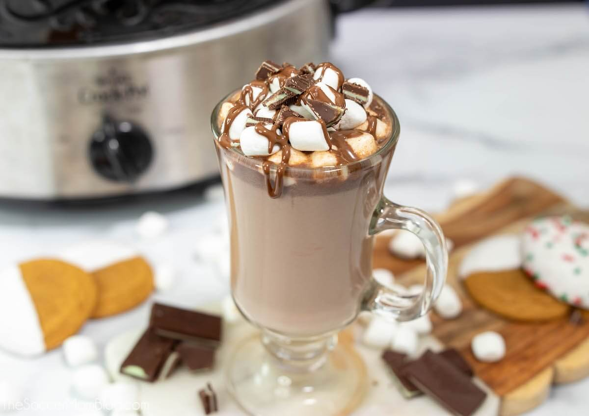 slow cooker hot cocoa in mug