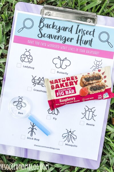 printable insect scavenger hunt