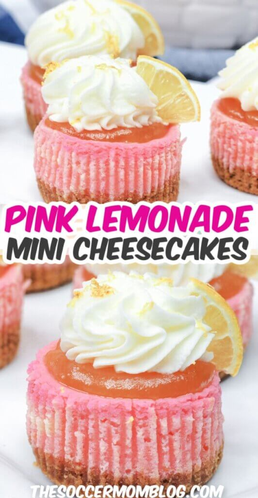 All the flavors of summer in a perfect handheld bite — these Pink Lemonade Mini Cheesecakes are super fun and easy to make!