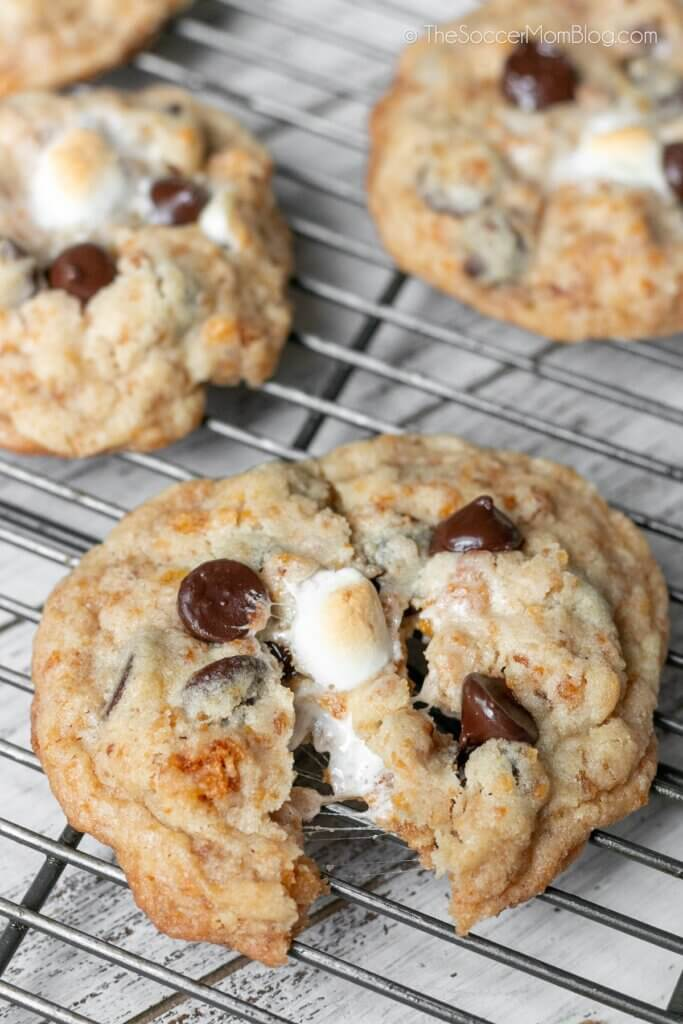 chocolate chip cookie torn open with gooey marshmallows inside