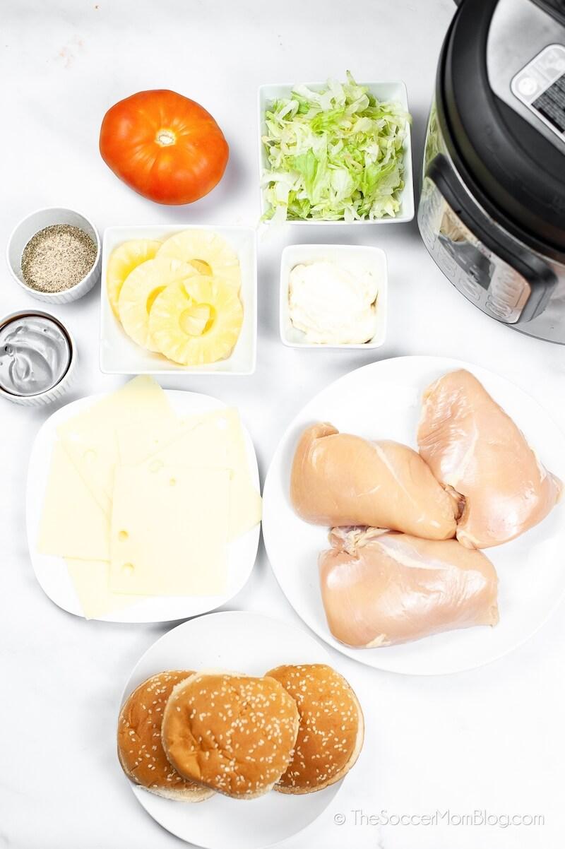 ingredients to make a chicken teriyaki burger