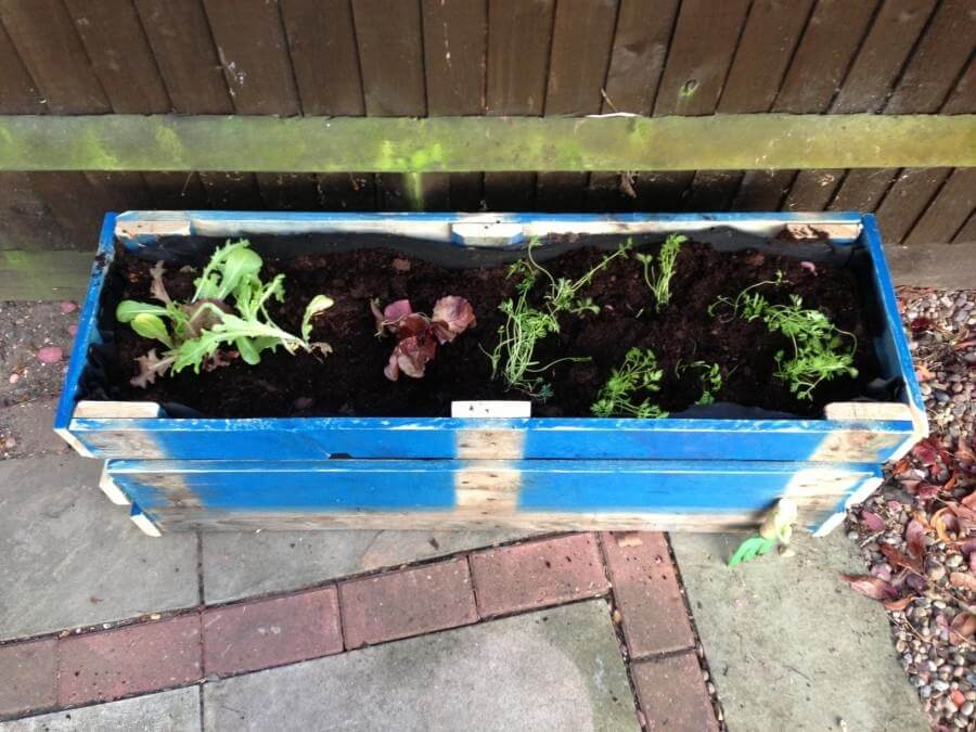 raised bed planter made from recycled wood pallets