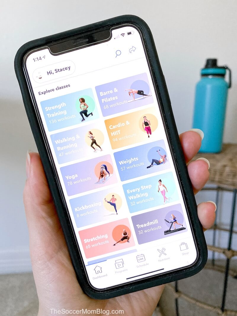 Openfit classes on app